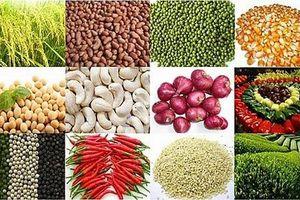 Việt Nam có cơ hội đạt Top 5 quốc gia xuất khẩu nông sản lớn nhất thế giới