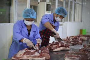 Giá lợn hơi tăng, giảm bất thường: Làm gì để người chăn nuôi được vui?
