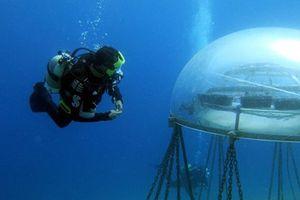 Trang trại nông nghiệp dưới biển đầu tiên trên thế giới