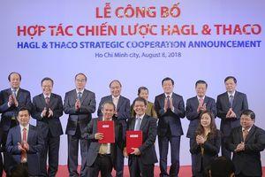 Cú 'bắt tay' trị giá 20.000 tỷ đồng giữa Thaco và HAGL