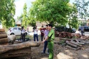 Sẽ kỷ luật một số cán bộ trong vụ gỗ lậu ở Đác Lắc