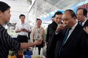 Thủ tướng thưởng thức nước dừa, trái cây tại Tiền Giang