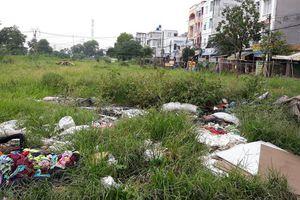 TP HCM: Quận Bình Tân sẽ nâng cấp công viên trong khu dân cư