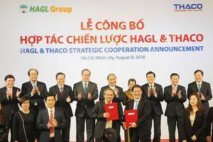 Hoàng Anh Gia Lai và Thaco công bố hợp tác chiến lược