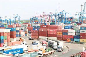 Nhiều rào cản với xuất khẩu bền vững