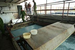 Nhiều đơn vị xả thải ra hệ thống thủy lợi trọng điểm quốc gia Bắc Hưng Hải