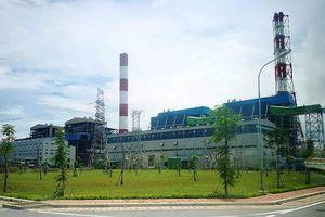 Nhiệt điện Thái Bình: Một nhà máy rất nhiều màu... xanh