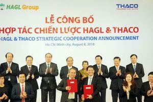 Trường Hải chi 7.800 tỷ đồng để tham gia các công ty của Hoàng Anh Gia Lai