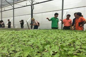 Startup công nghệ và nhà nông, sao vẫn chưa gặp nhau?