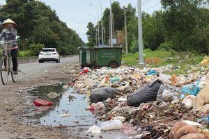 Ớn với cảnh rác 'tấn công' ở Bà Rịa - Vũng Tàu