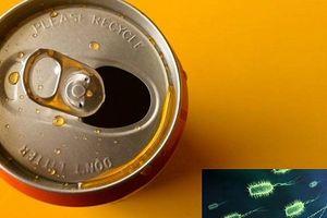 Uống bia đóng trong lon nhôm có nguy cơ nhiễm khuẩn gây bệnh