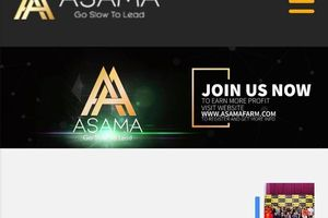 Nhà đầu tư nghi ngờ, lo sợ Asama Mining là Sky Mining thứ hai