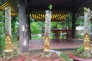 Chiêm ngưỡng siêu phẩm Phúc Lộc Thọ được dát vàng trên thân cây