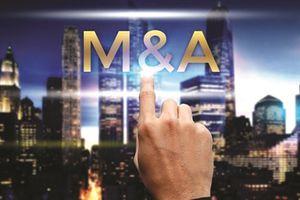 Hoạt động M&A bất động sản tiếp tục là xu thế tất yếu