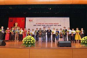 CTCP Thương mại Thái Hưng lọt TOP 1000 doanh nghiệp nộp thuế lớn nhất Việt Nam