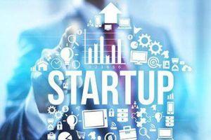 Công bố 3 startup Việt được chọn tham gia trao đổi startup Việt Nam - Quốc tế
