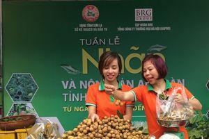 Nông sản an toàn Sơn La tạo ấn tượng với người tiêu dùng Thủ đô