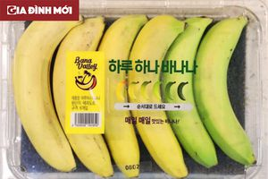 Hộp 'chuối một ngày' với 6 cấp độ chín bán ở siêu thị Hàn Quốc gây tranh cãi