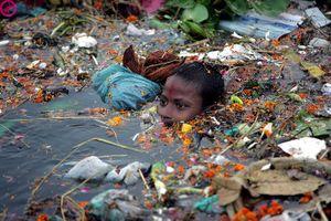 Loạt ảnh cho thấy con người đang tàn phá môi trường khủng khiếp tới mức nào