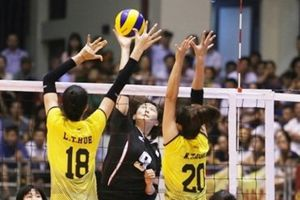 Hà Tĩnh: Dân đặt gạch chờ mua vé trận chung kết bóng chuyền VTV Cup