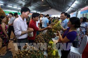 Hưng Yên lần thứ hai tổ chức Lễ hội nhãn lồng
