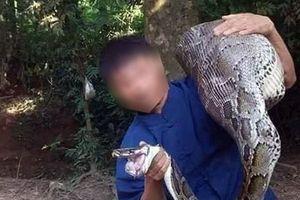 Lạng Sơn: Trăn khổng lồ nuốt dê trên núi bị bắt sống