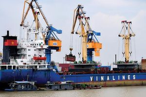 Ẩn số thương vụ IPO của Vinalines