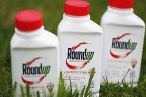 Monsanto thua kiện, phải bồi thường 289 triệu USD vì thuốc diệt cỏ gây ung thư