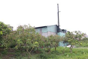 Hưng Yên: Thực hư thông tin công ty Minh Long gây ô nhiễm môi trường