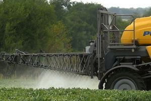 Monsanto bị phạt 289 triệu USD vì thuốc diệt cỏ gây ung thư
