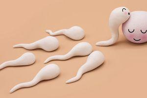 5 thói quen gây suy giảm chất lượng tinh trùng