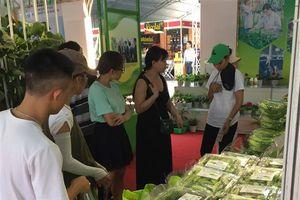 TP.HCM có trên 9.300 ha gieo trồng rau an toàn