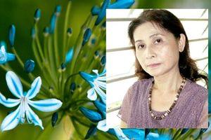 Nhà thơ Dư Thị Hoàn: Người trốn chạy đám đông
