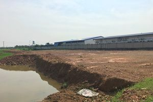 Vĩnh Lộc (Thanh Hóa): Ai 'bật đèn xanh' cho Công ty May Appareltech san lấp đất lúa trái phép?