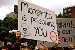 Công ty từng sản xuất chất độc da cam bị thua kiện gần 300 triệu USD do thuốc diệt cỏ gây ung thư