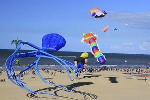 Festival biển Bà Rịa Vũng Tàu chào đón du khách