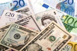Tỷ giá ngoại tệ 14/8: USD và Euro 'ngược chiều nước mắt'