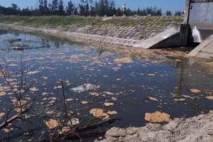 Hà Tĩnh: Xử phạt 435 triệu đồng đối với Công ty CP xây dựng Tiến Đạt vì hành vi vi phạm bảo vệ môi trường