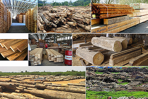 Để đồ gỗ Việt Nam là thương hiệu 'nặng ký' trên thế giới