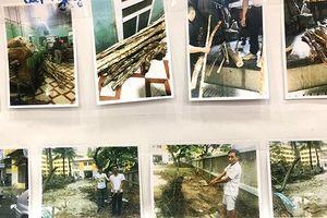 Đánh sập đường dây chuyên trộm cắp, mua bán gỗ sưa