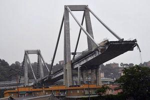 Italy yêu cầu giám đốc phụ trách tu sửa cầu vượt Morandi từ chức