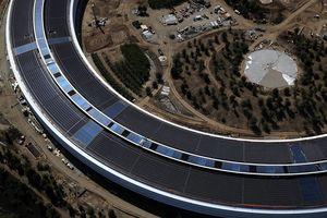 Apple cố tính giảm thuế bằng cách kê khai các tòa nhà tại trụ sở Apple Park chỉ có giá trị 200 USD