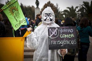 Sự trở lại của Monsanto và hiểm họa thuốc diệt cỏ tại Việt Nam