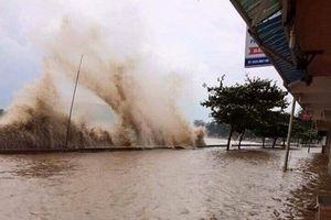 Hải Phòng: Huy động hơn 42.000 người xung kích hộ đê phòng chống bão số 4
