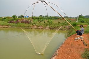 Khôi phục sản xuất thủy sản sau mưa lũ