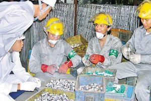 Hướng dẫn đưa lao động đi làm việc thời vụ tại Hàn Quốc