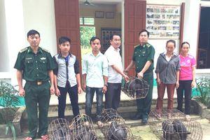 Trao tặng lợn giống cho người nghèo vùng cao Nghệ An