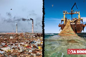 20 bức ảnh sốc cho thấy thực trạng con người đang hủy hoại Trái Đất ra sao
