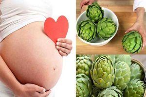 Lợi ích vàng của hoa atiso với sức khỏe phụ nữ mang thai