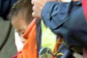 Nhật Bản: Cậu bé 2 tuổi sống sót kỳ diệu trong rừng suốt 3 ngày